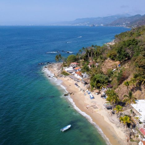 Whale Watching in Puerto Vallarta: Everything You Need to Know